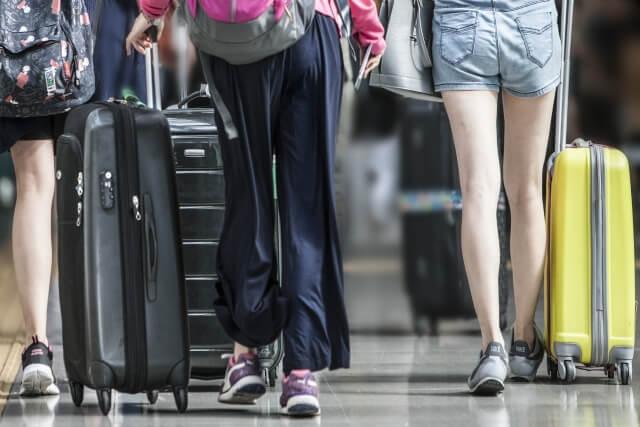 【どうぶつピース】検疫探知犬が空港で大活躍!どんな仕事内容なのか?